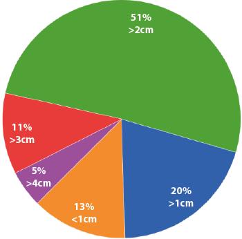 Umfrage 2 zu Phallosan Erfolgen: Mehr als 4cm = 5%, mehr als 3cm = 11%, mehr als 2cm = 51%, mehr als 1cm = 20%, weniger als 1cm = 13%.